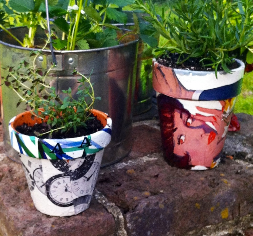 Step 4:  Allow to dry & pot your plants